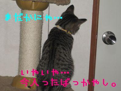 20060919121414.jpg