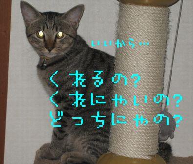 20060920155726.jpg