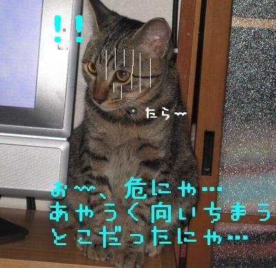 20060921123859.jpg