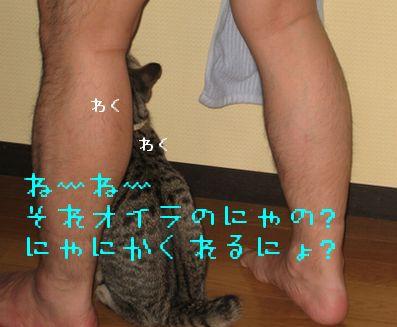 20060925132552.jpg