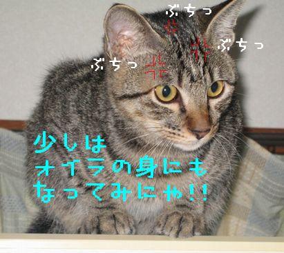 20060928003528.jpg
