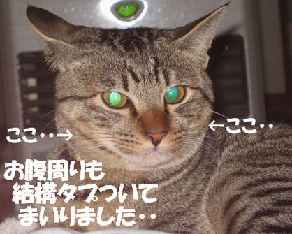 20061206152430.jpg