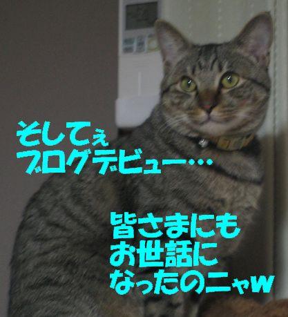 20061230215530.jpg