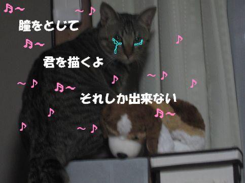 20070127013437.jpg
