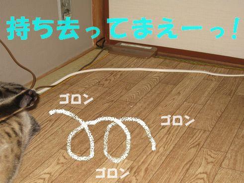 20070317001127.jpg