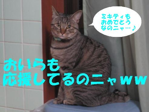 20070325011658.jpg