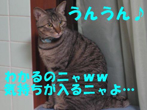 20070325012359.jpg