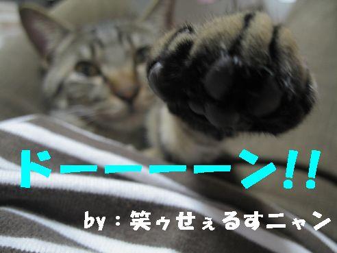 20070417014020.jpg