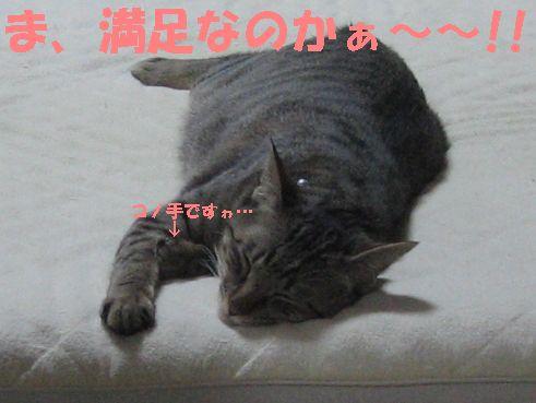 20070430011945.jpg