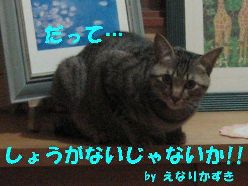 20070501233024.jpg