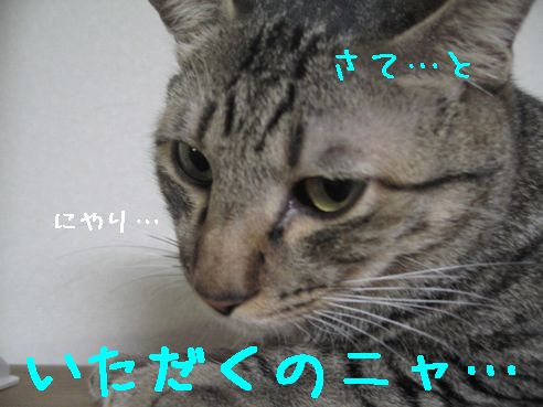 20070819223533.jpg