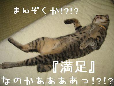 満足なのかーーー!!