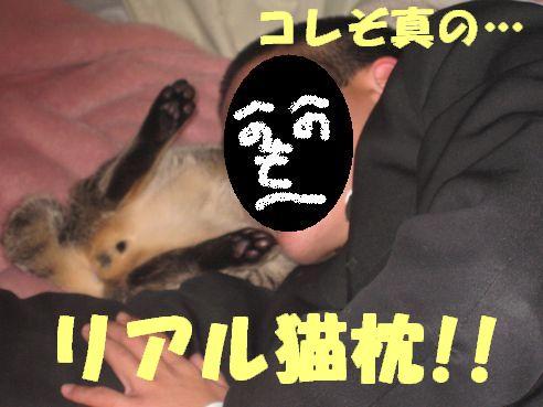 IMG_3439_1.jpg