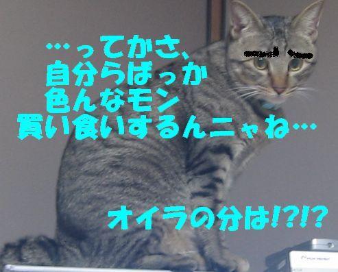 IMG_4202nyann.jpg