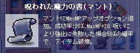 04040005.jpg