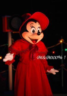 2007リトル・クリスマス・ミニー00