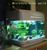 New水槽