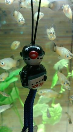 お魚グッズ⑧