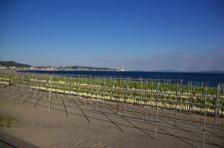 20071123 岩井口