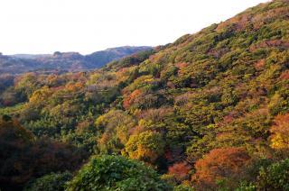 20071202 大楠山