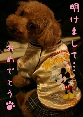 あけおめ_2008