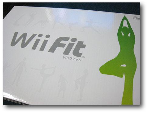 wiifit01.jpg