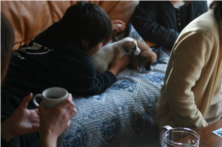 里親さんと子犬