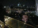 東京2 003