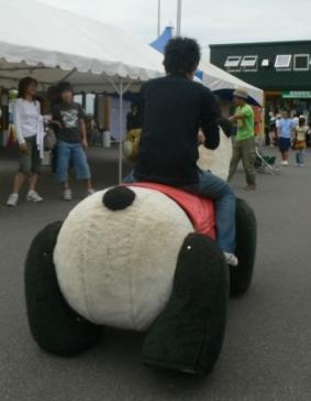 パンダに乗った背中