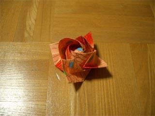 fukuyama_rose.jpg