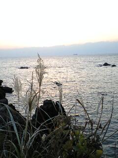 20080106185515.jpg