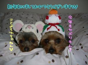 2008年でちゅ~♪