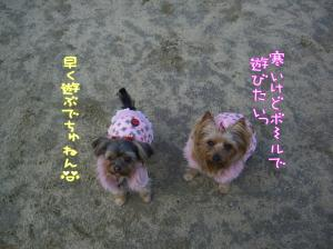 初お散歩♪