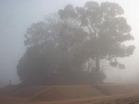 霧の江田船山古墳06