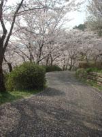 大津山公園01