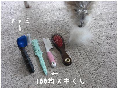 2007_11140127.jpg