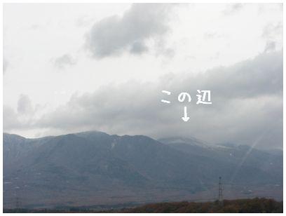 2007_11160198.jpg