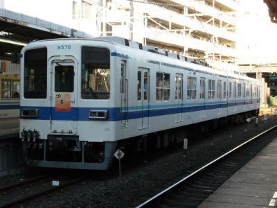 P1020008.jpg