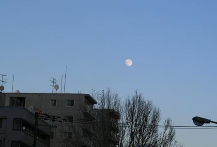 空と白い月