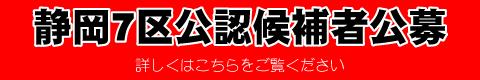 民主党静岡7区公募
