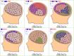 脳内知り合い