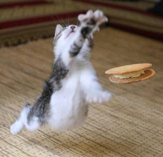 クッキージャンプ!