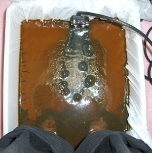 footbath2.jpg