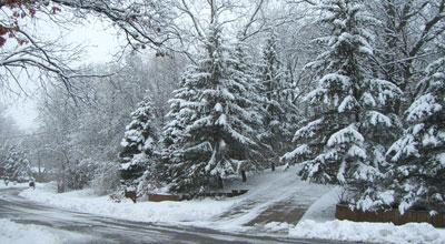 snow031808.jpg