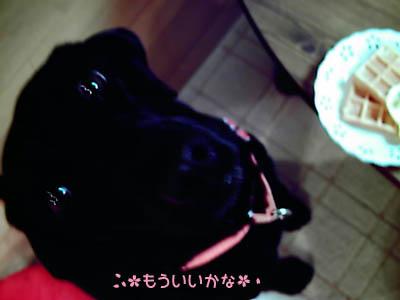 IMAG0188-1.jpg