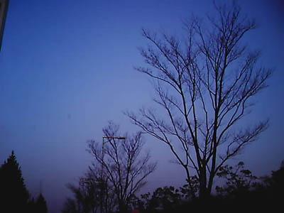 IMAG9900-9.jpg