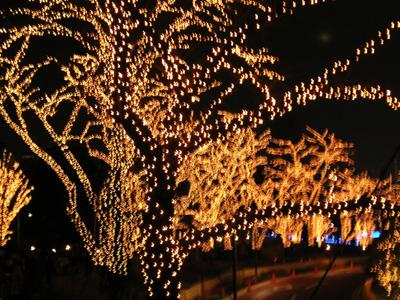 Midtownのイルミネーション (2007/12/25)