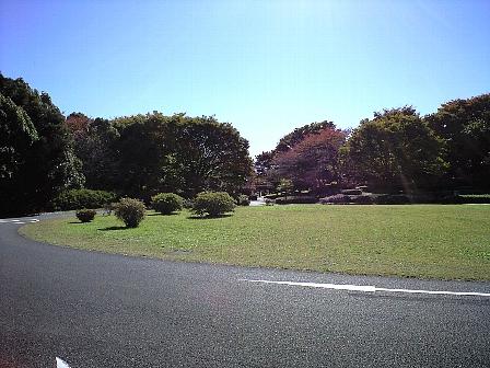 2007111314.jpg