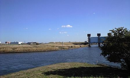 2007112206.jpg