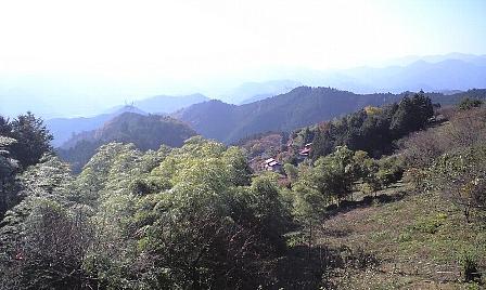 2007112521.jpg